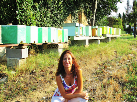 The Bees – Industrious females